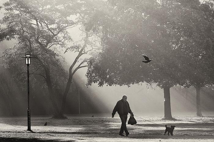 Morgens an der Ziegelwiese